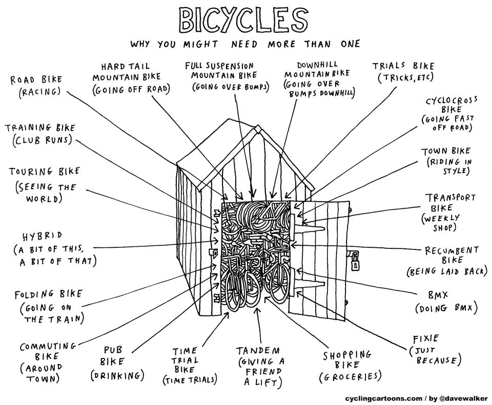 Bicycles why you might need more than one.jpg